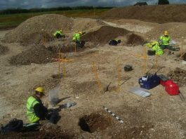 Barton Stacey to Lockerley Gas Pipeline | Wessex Archaeology