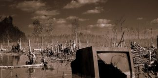 """Swamp TV"" by James Good is licensed under CC BY-NC-ND 2.0"