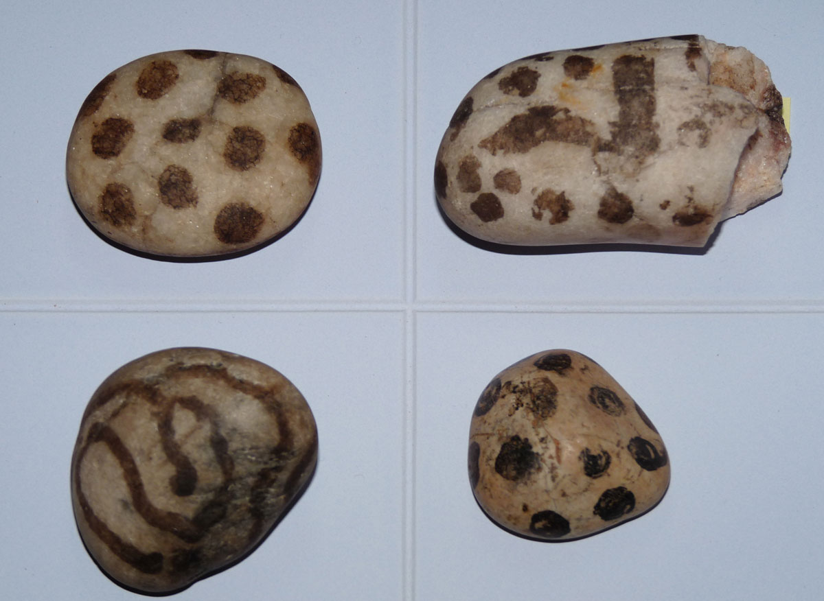 Painted pebbles clockwise from top left: Sandsound; Upper Scalloway; Balta; and Clickhimin (© Shetland Museum and Archives).