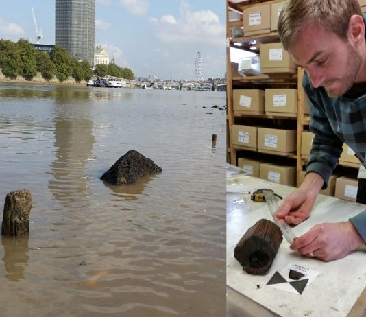 Post at Vauxhall and Michael recording wood. Image: Wessex Archaeology