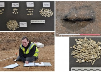 Excavator Malgorzata Some of the cremated remains found by Oxford Archaeology at a pipeline site in Essex, the partially excavated pit and Kwiatkowska completing record sheets at the site. © Oxford Archaeology