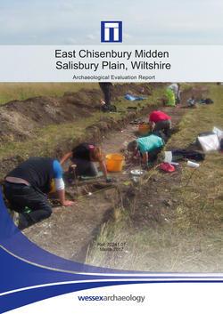 Chisenbury Midden Report