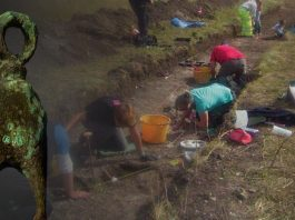 [Image] Copper pendant and excavations at East Chisenbury midden