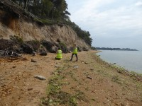Urgent call for volunteers to survey England's disappearing coastal archaeology