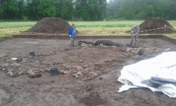 Arnsburg excavations call for volunteers