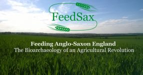 Research into 'agricultural revolution' in Anglo-Saxon England sheds new light on medieval land use